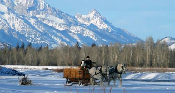jackson-hole-dinner-sleigh-ride