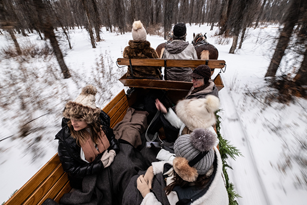 A Vintage Wooden Sleigh Glides Through The Cottonwood Forest In Jackson Hole